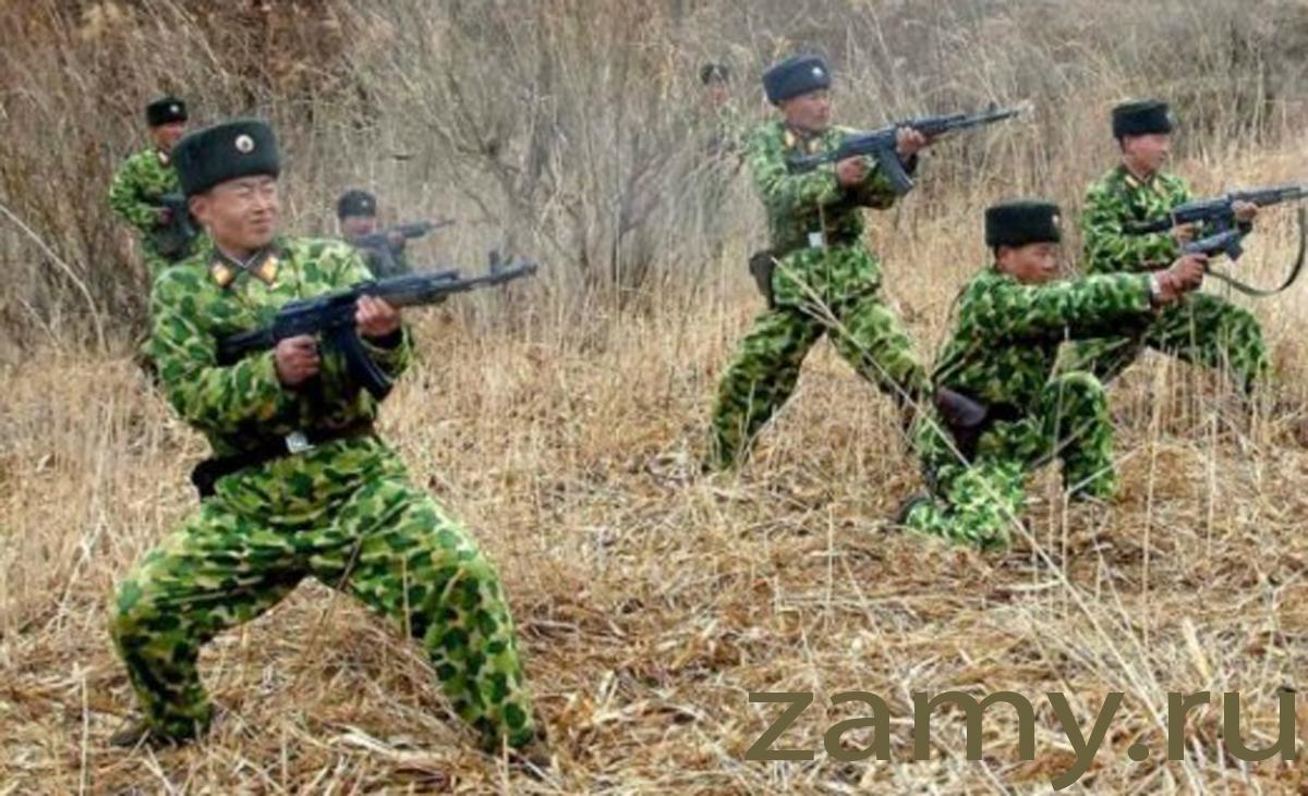 Войска северной кореи